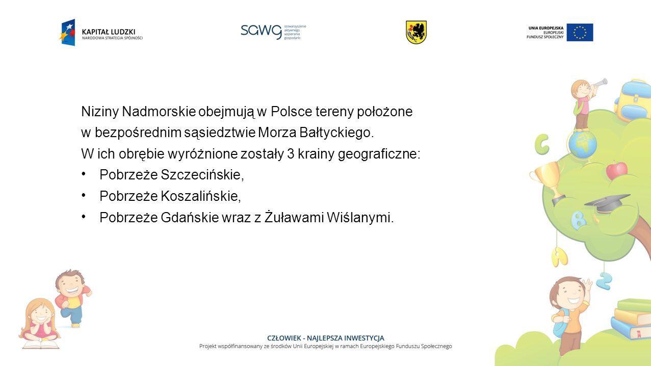 Niziny Nadmorskie obejmują w Polsce tereny położone