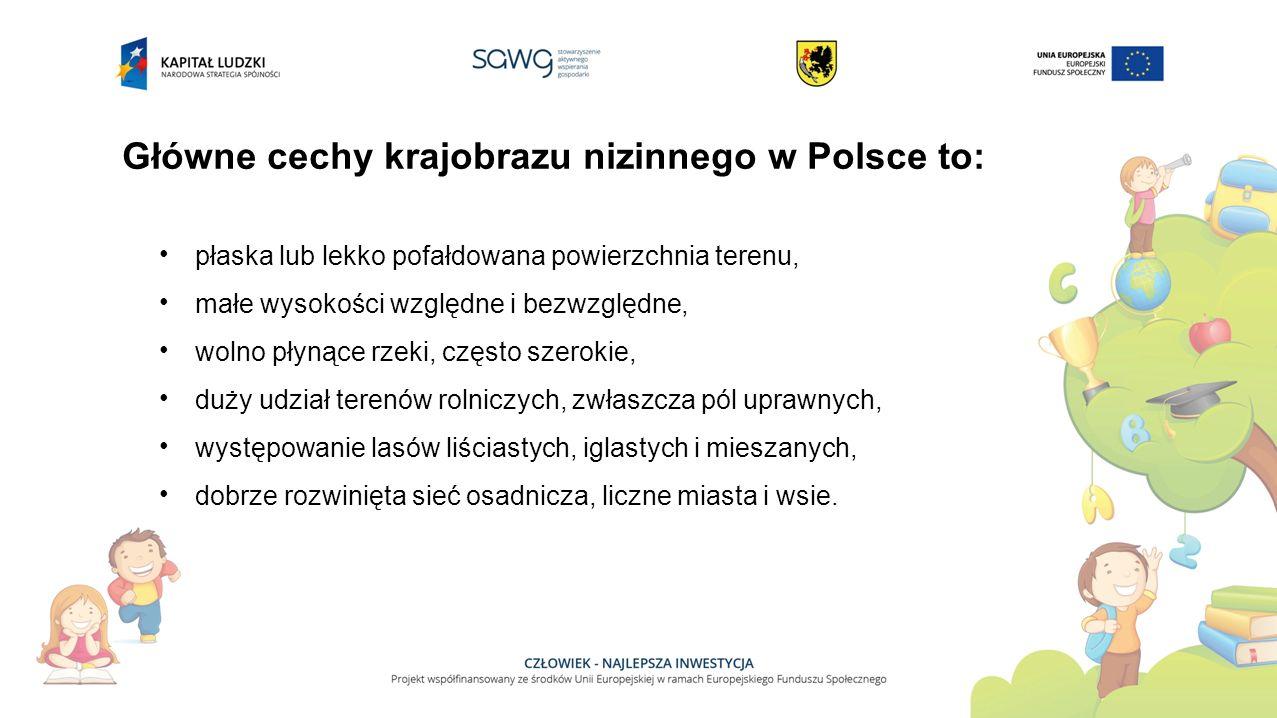 Główne cechy krajobrazu nizinnego w Polsce to: