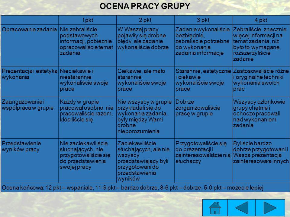 OCENA PRACY GRUPY 1pkt 2 pkt 3 pkt 4 pkt Opracowanie zadania
