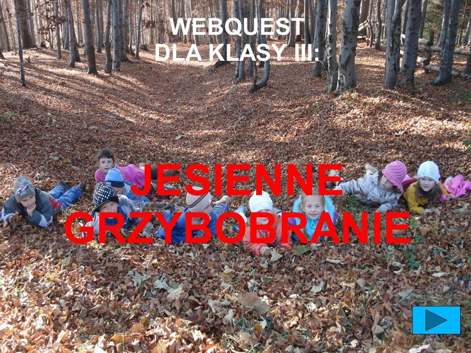 WEBQUEST DLA KLASY III: