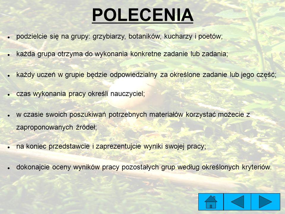 POLECENIA podzielcie się na grupy: grzybiarzy, botaników, kucharzy i poetów; każda grupa otrzyma do wykonania konkretne zadanie lub zadania;