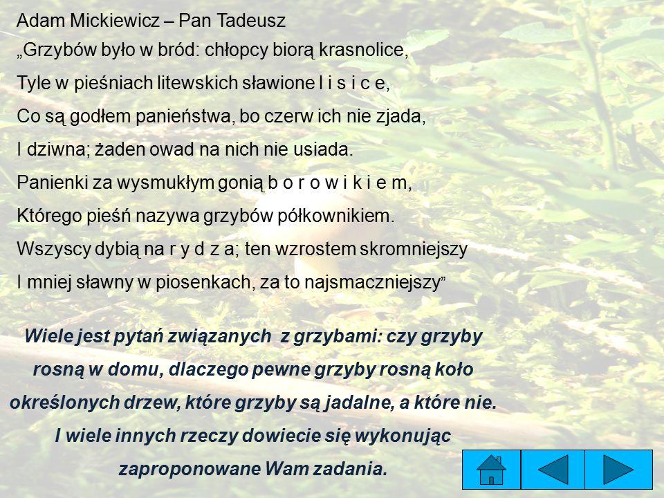 Adam Mickiewicz – Pan Tadeusz