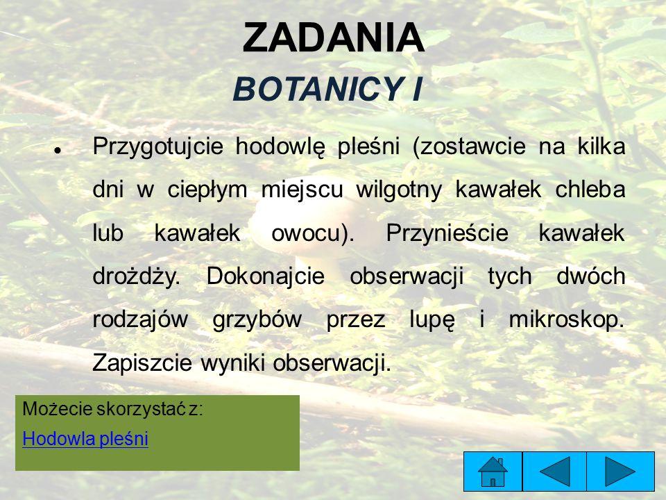 ZADANIA BOTANICY I.
