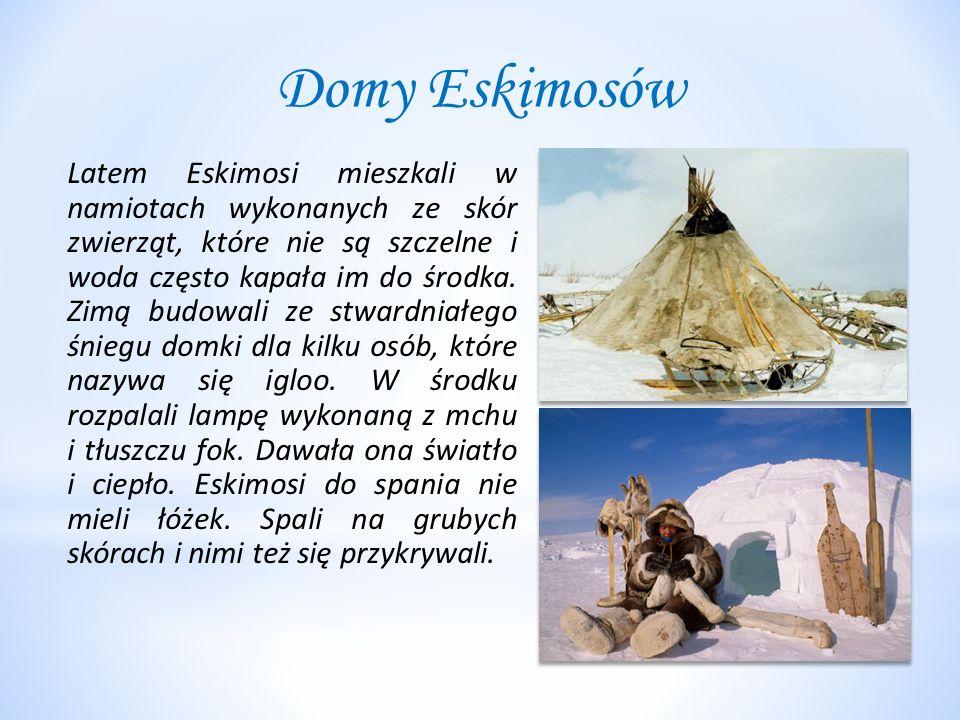 Domy Eskimosów