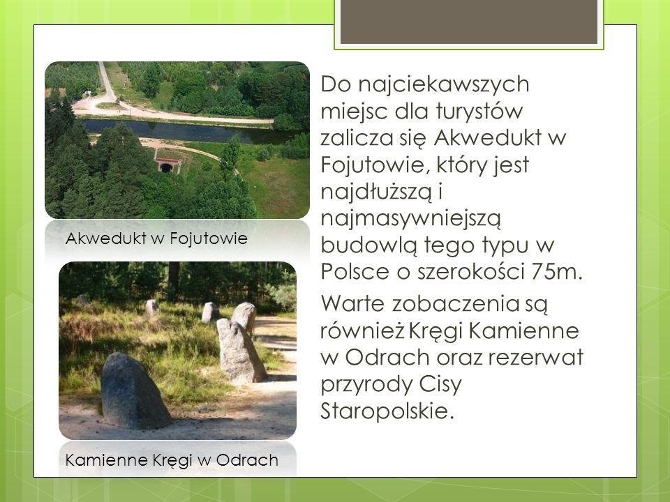 Do najciekawszych miejsc dla turystów zalicza się Akwedukt w Fojutowie, który jest najdłuższą i najmasywniejszą budowlą tego typu w Polsce o szerokości 75m. Warte zobaczenia są również Kręgi Kamienne w Odrach oraz rezerwat przyrody Cisy Staropolskie.