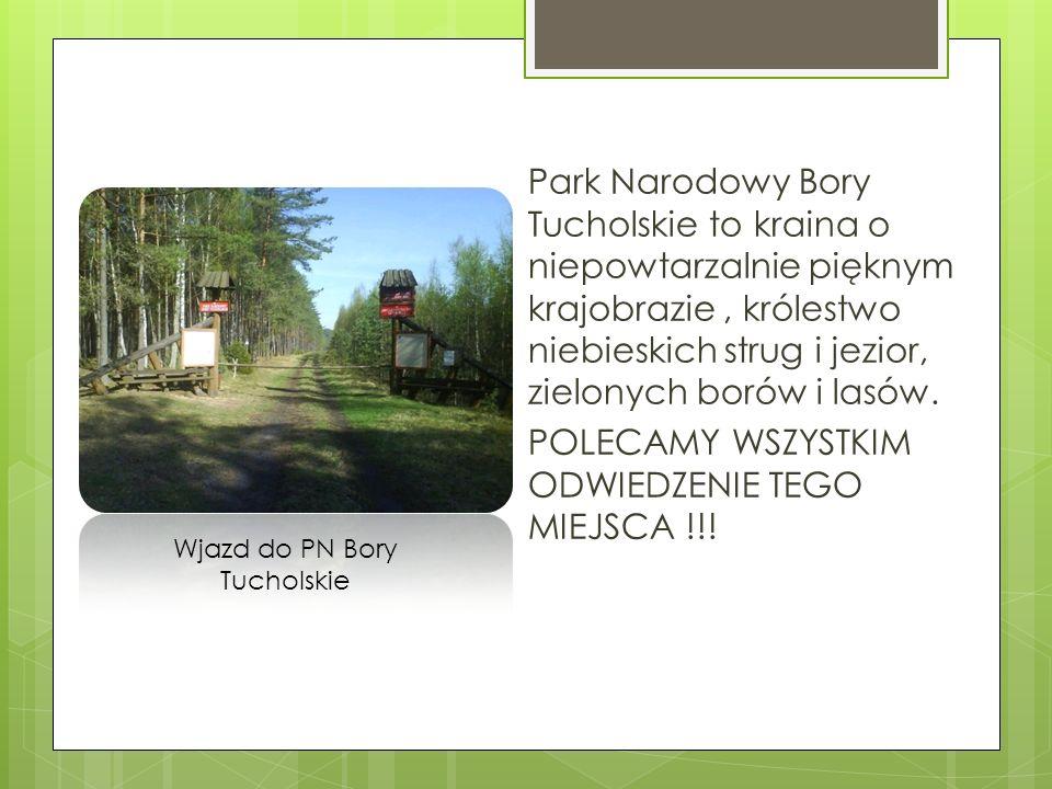 Wjazd do PN Bory Tucholskie