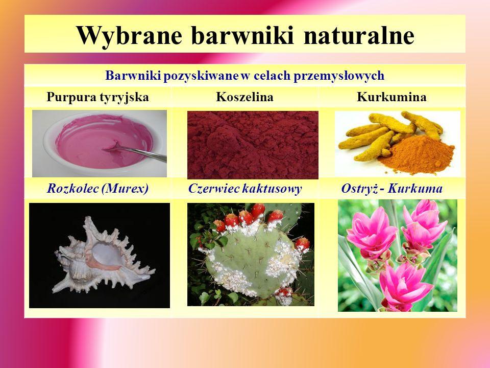Wybrane barwniki naturalne