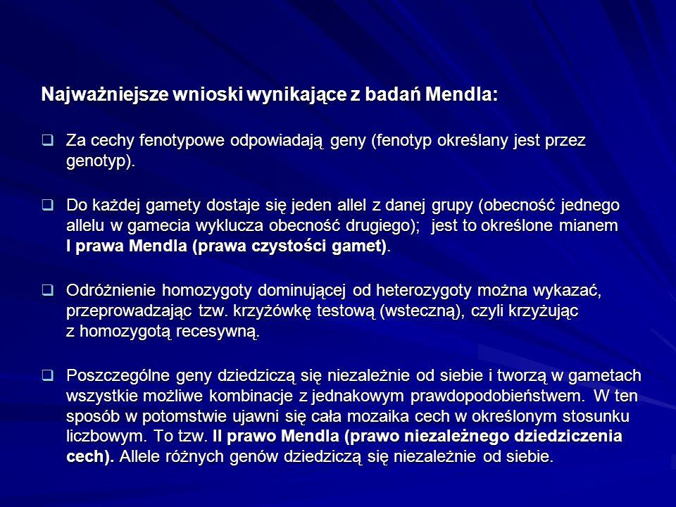 Najważniejsze wnioski wynikające z badań Mendla:
