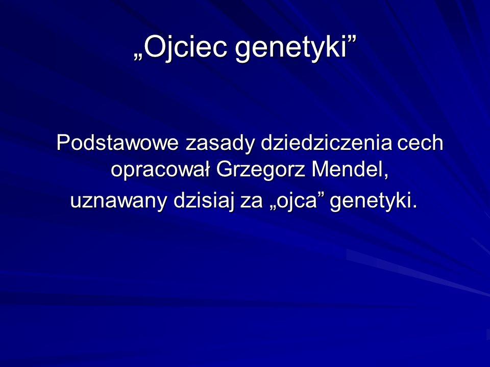 """""""Ojciec genetyki Podstawowe zasady dziedziczenia cech opracował Grzegorz Mendel, uznawany dzisiaj za """"ojca genetyki."""