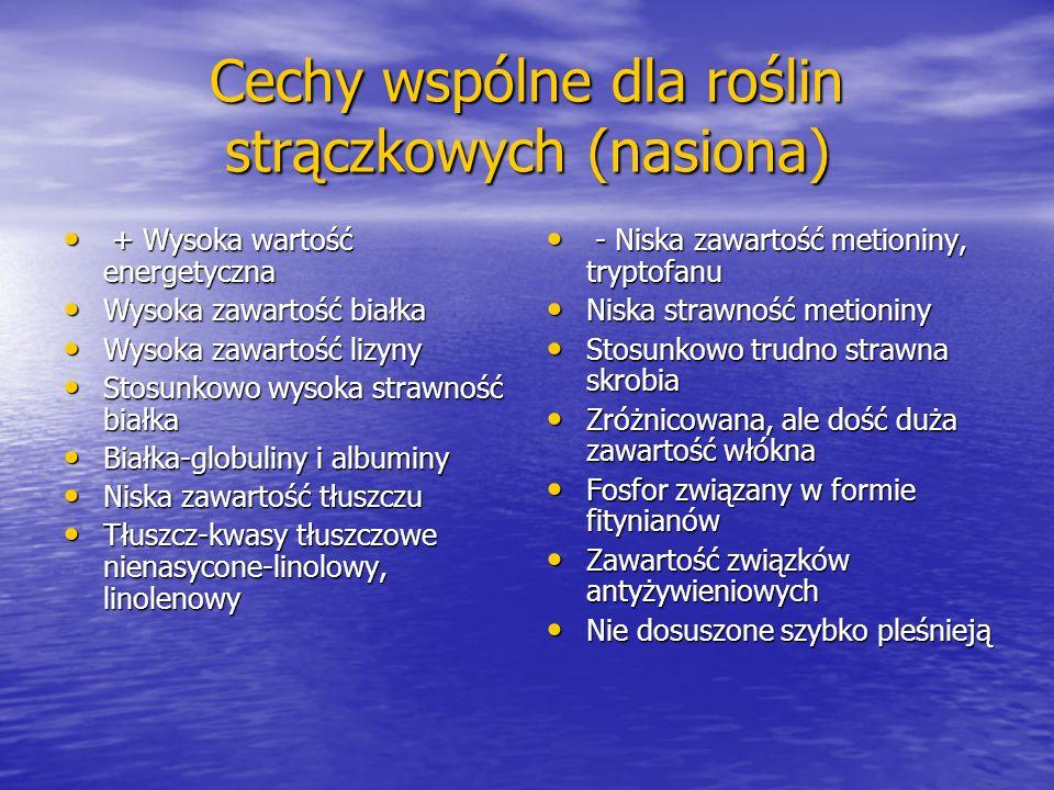 Cechy wspólne dla roślin strączkowych (nasiona)