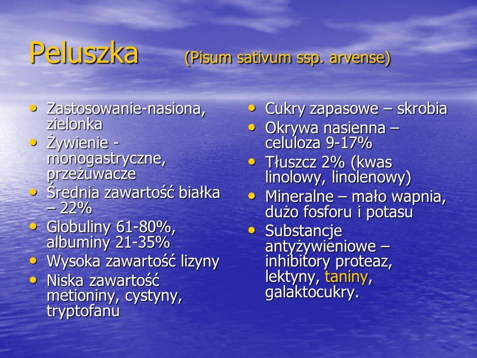 Peluszka (Pisum sativum ssp. arvense)