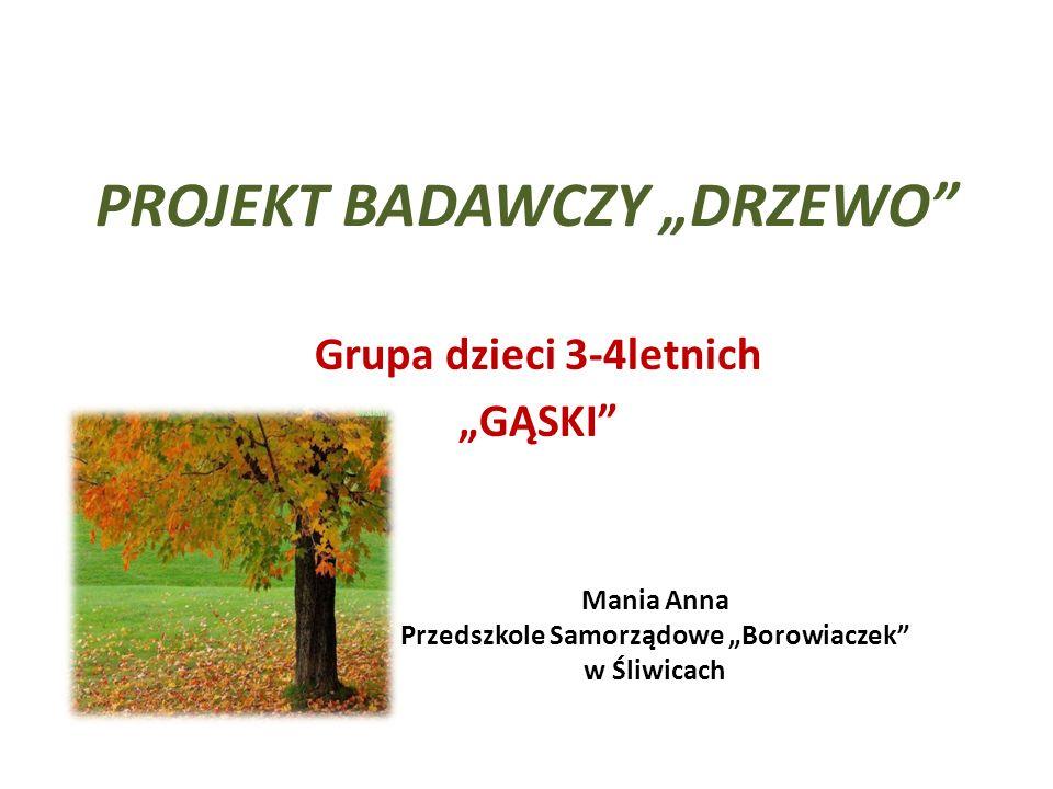 """PROJEKT BADAWCZY """"DRZEWO"""