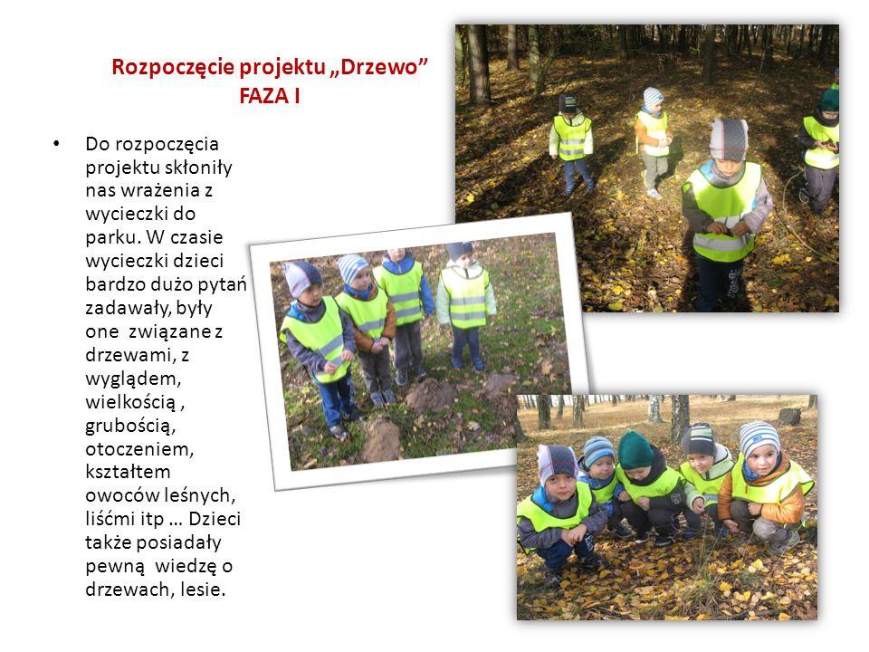 """Rozpoczęcie projektu """"Drzewo FAZA I"""
