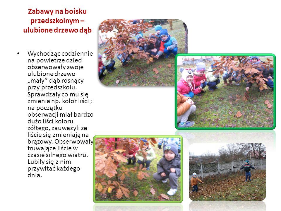 Zabawy na boisku przedszkolnym – ulubione drzewo dąb