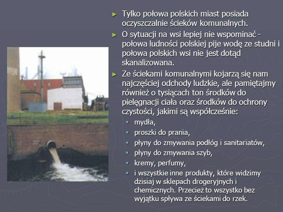 Tylko połowa polskich miast posiada oczyszczalnie ścieków komunalnych.