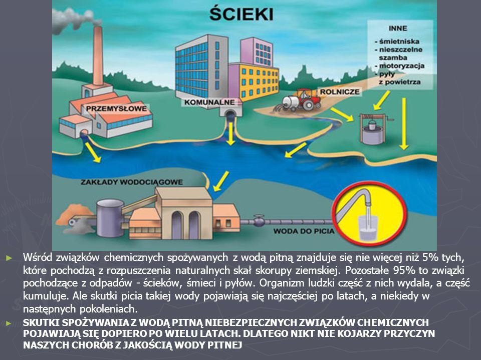 Wśród związków chemicznych spożywanych z wodą pitną znajduje się nie więcej niż 5% tych, które pochodzą z rozpuszczenia naturalnych skał skorupy ziemskiej. Pozostałe 95% to związki pochodzące z odpadów - ścieków, śmieci i pyłów. Organizm ludzki część z nich wydala, a część kumuluje. Ale skutki picia takiej wody pojawiają się najczęściej po latach, a niekiedy w następnych pokoleniach.