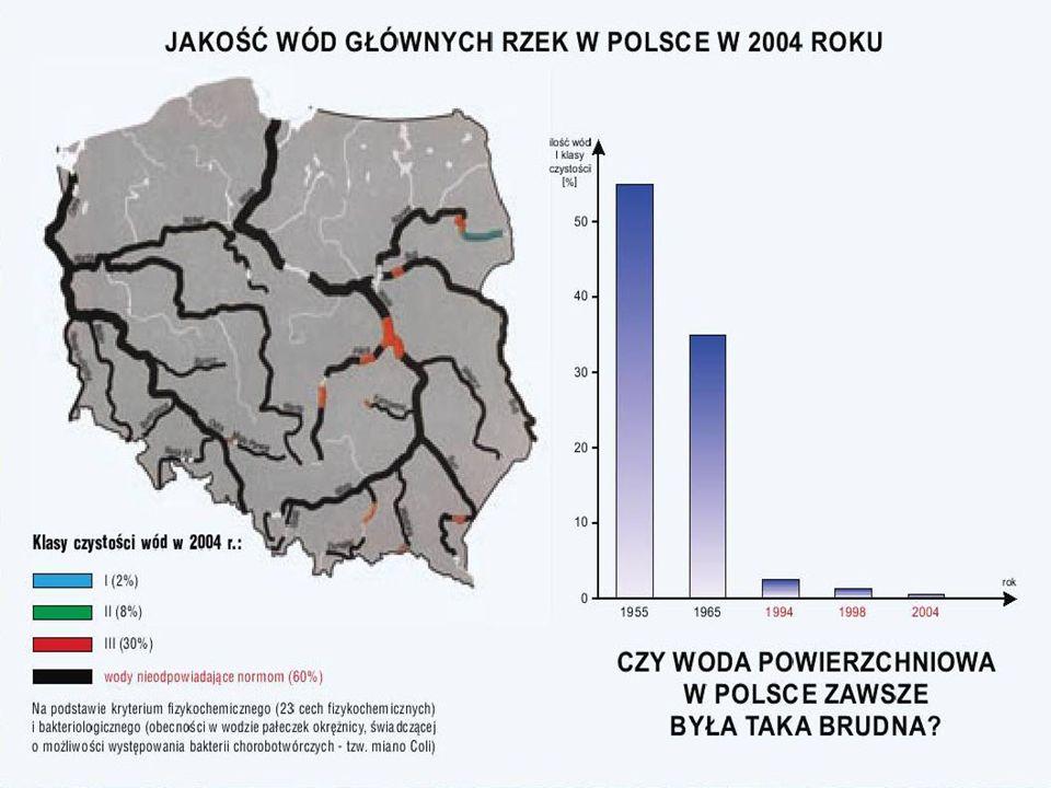Stan czystości wód w Polsce