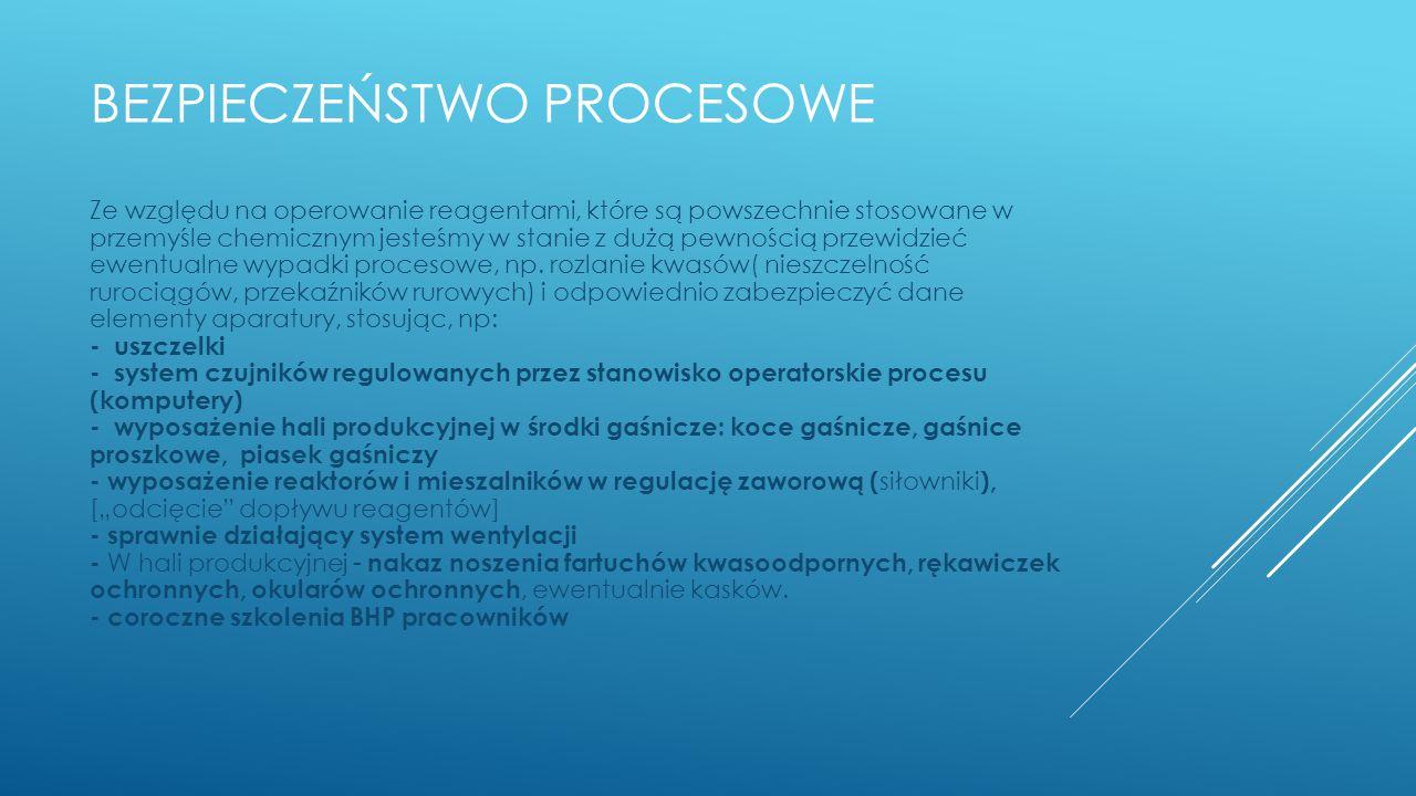 Bezpieczeństwo procesowe
