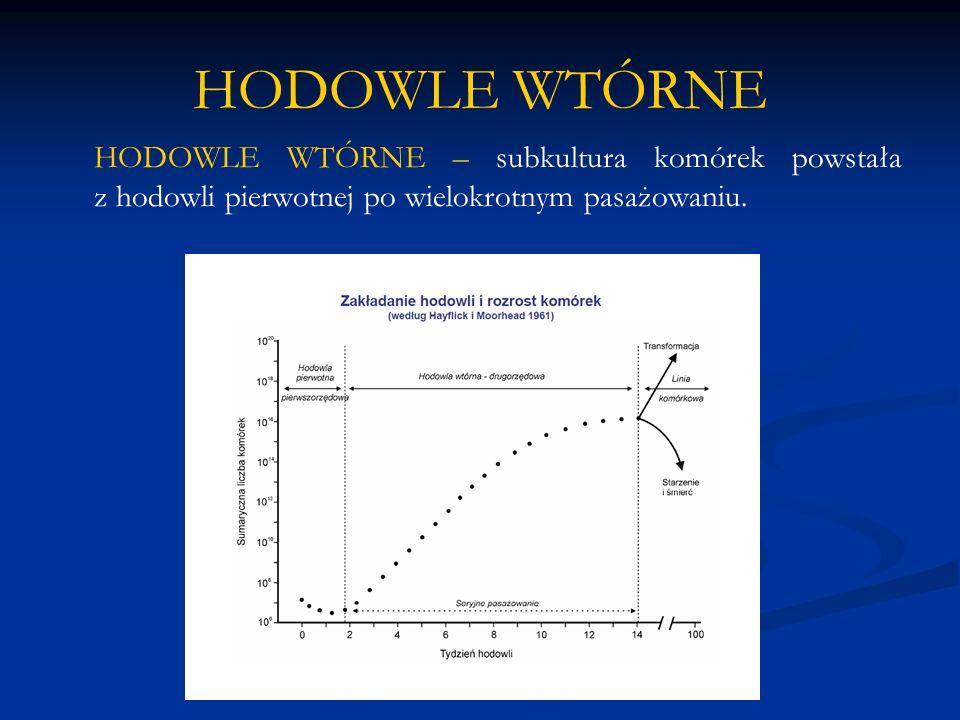 HODOWLE WTÓRNE HODOWLE WTÓRNE – subkultura komórek powstała z hodowli pierwotnej po wielokrotnym pasażowaniu.