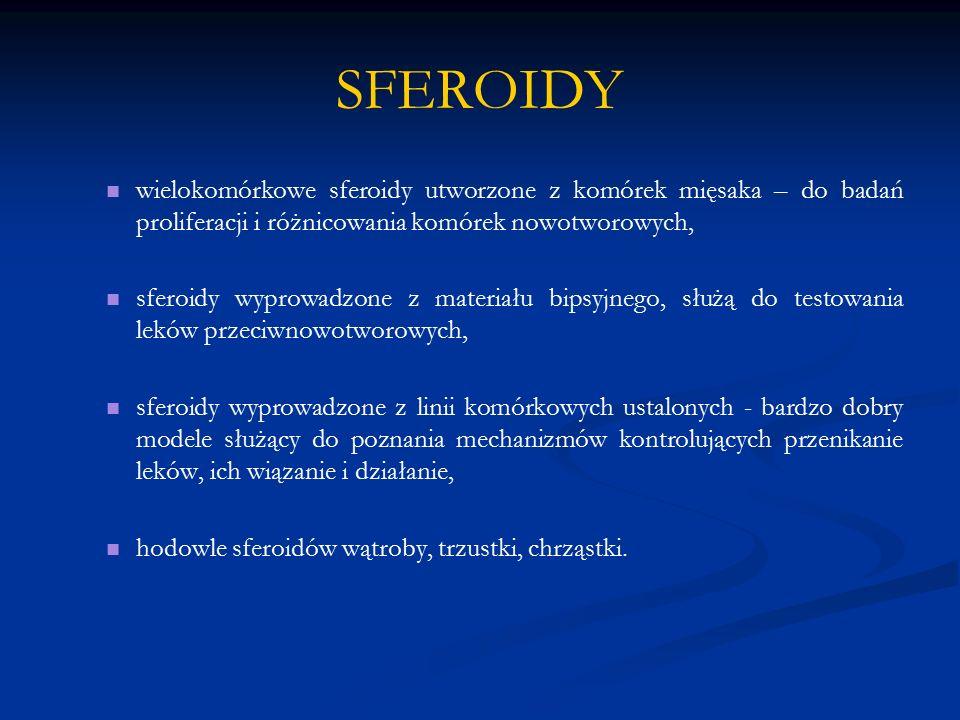 SFEROIDY wielokomórkowe sferoidy utworzone z komórek mięsaka – do badań proliferacji i różnicowania komórek nowotworowych,