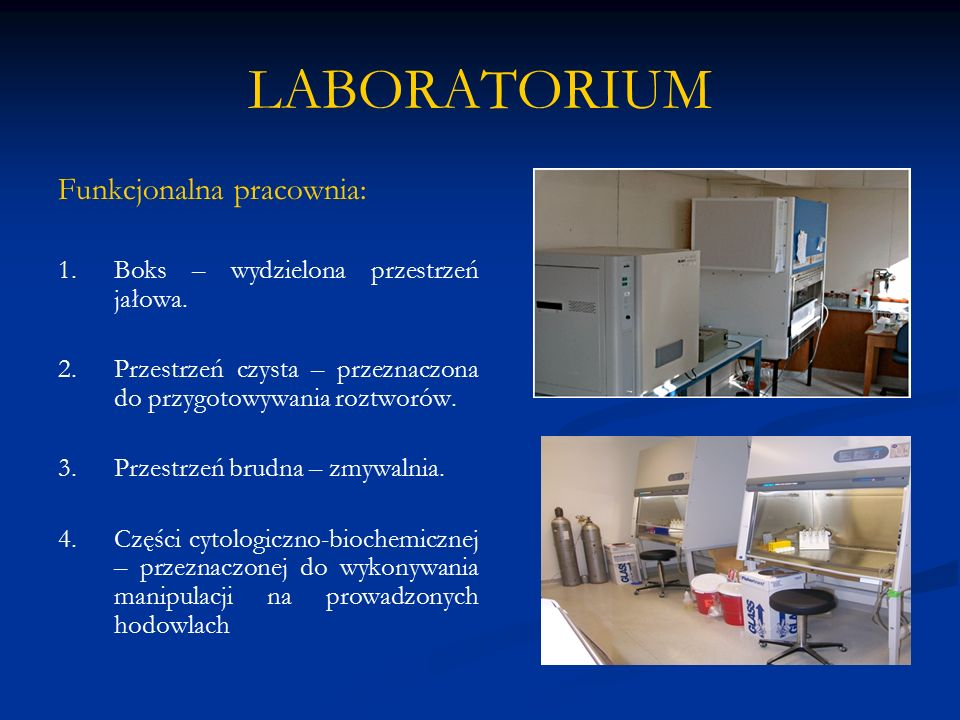 LABORATORIUM Funkcjonalna pracownia:
