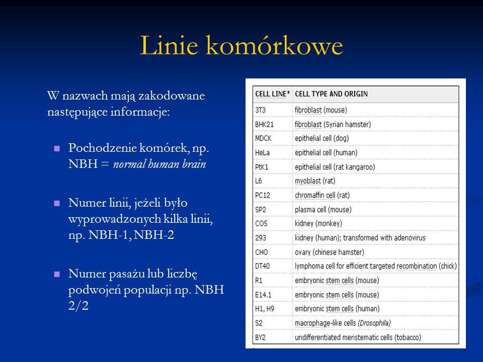 Linie komórkowe W nazwach mają zakodowane następujące informacje: