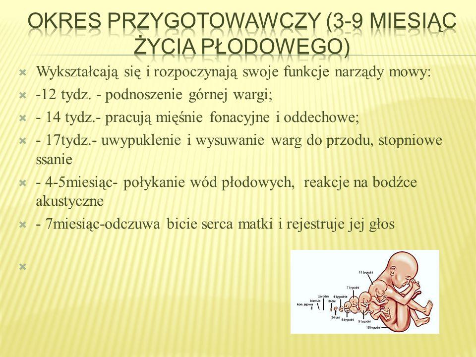 Okres przygotowawczy (3-9 miesiąc życia płodowego)