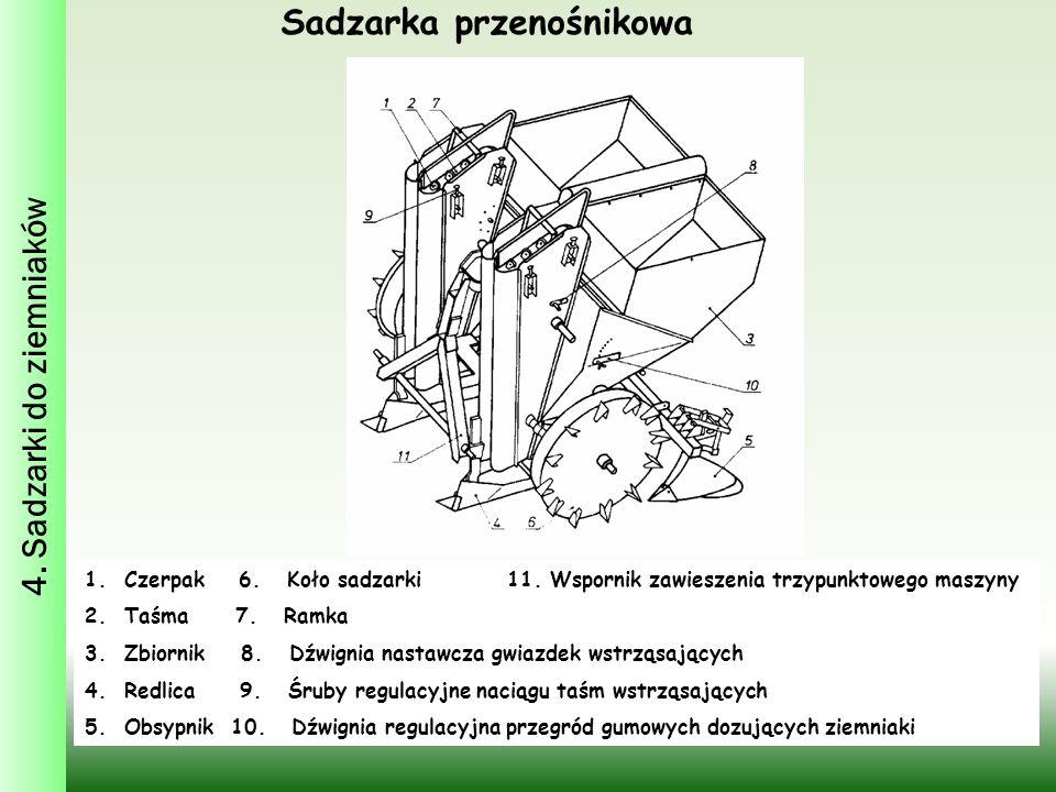4. Sadzarki do ziemniaków Sadzarka przenośnikowa