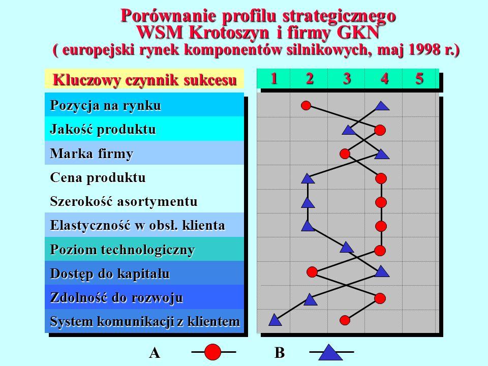 Porównanie profilu strategicznego WSM Krotoszyn i firmy GKN