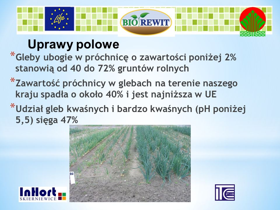 Uprawy polowe Gleby ubogie w próchnicę o zawartości poniżej 2% stanowią od 40 do 72% gruntów rolnych.