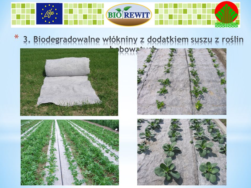 3. Biodegradowalne włókniny z dodatkiem suszu z roślin bobowatych