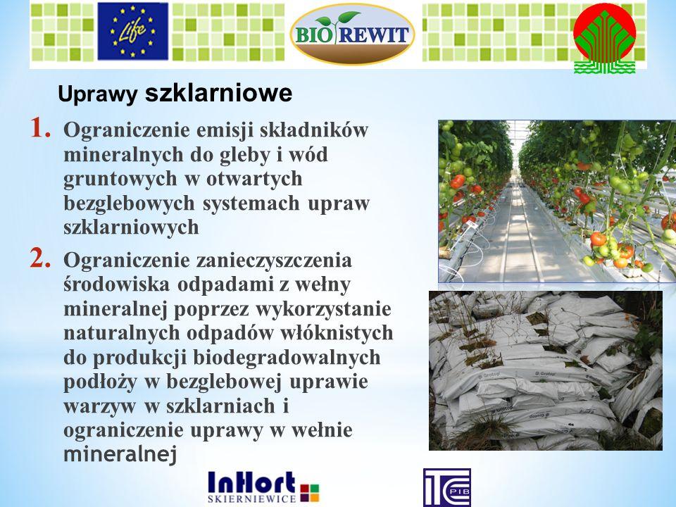 Uprawy szklarniowe Ograniczenie emisji składników mineralnych do gleby i wód gruntowych w otwartych bezglebowych systemach upraw szklarniowych.