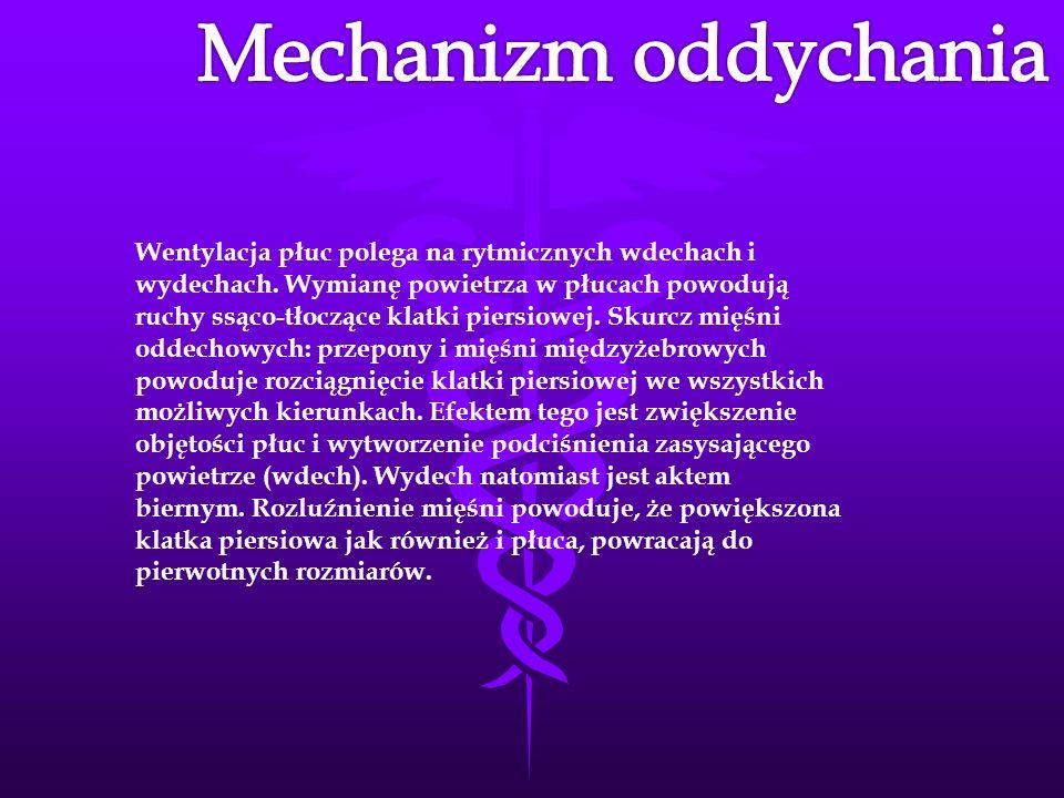 Mechanizm oddychania