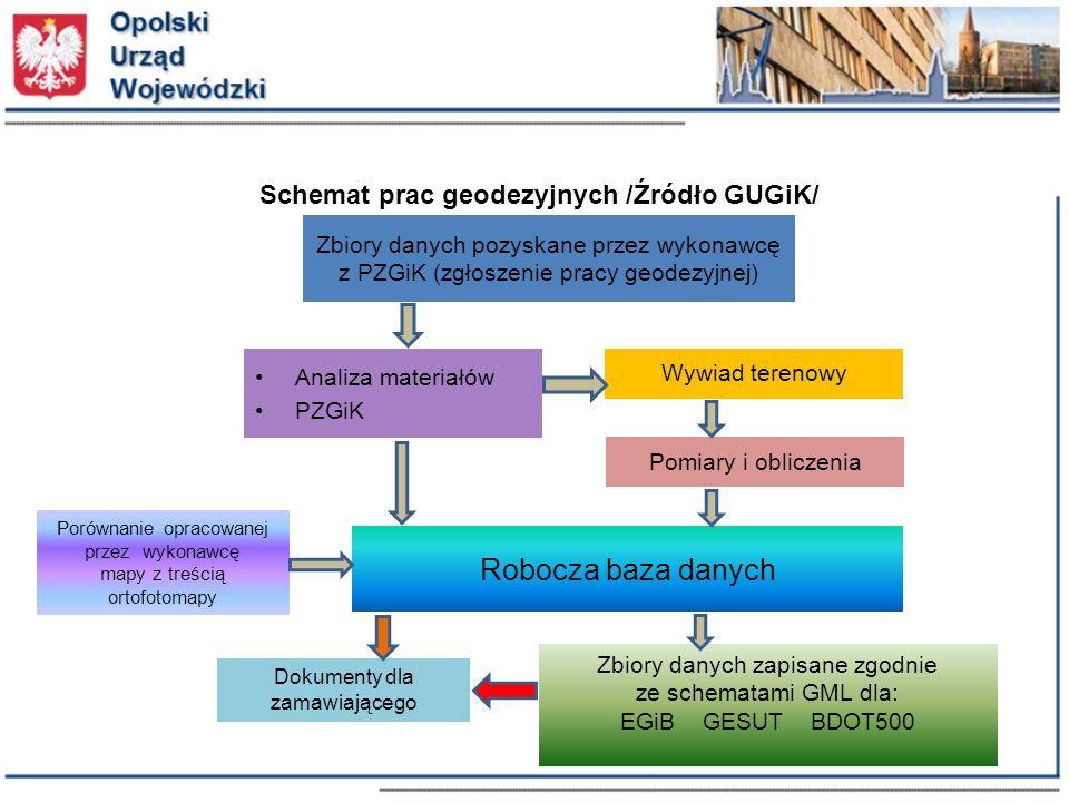 Robocza baza danych Schemat prac geodezyjnych /Źródło GUGiK/