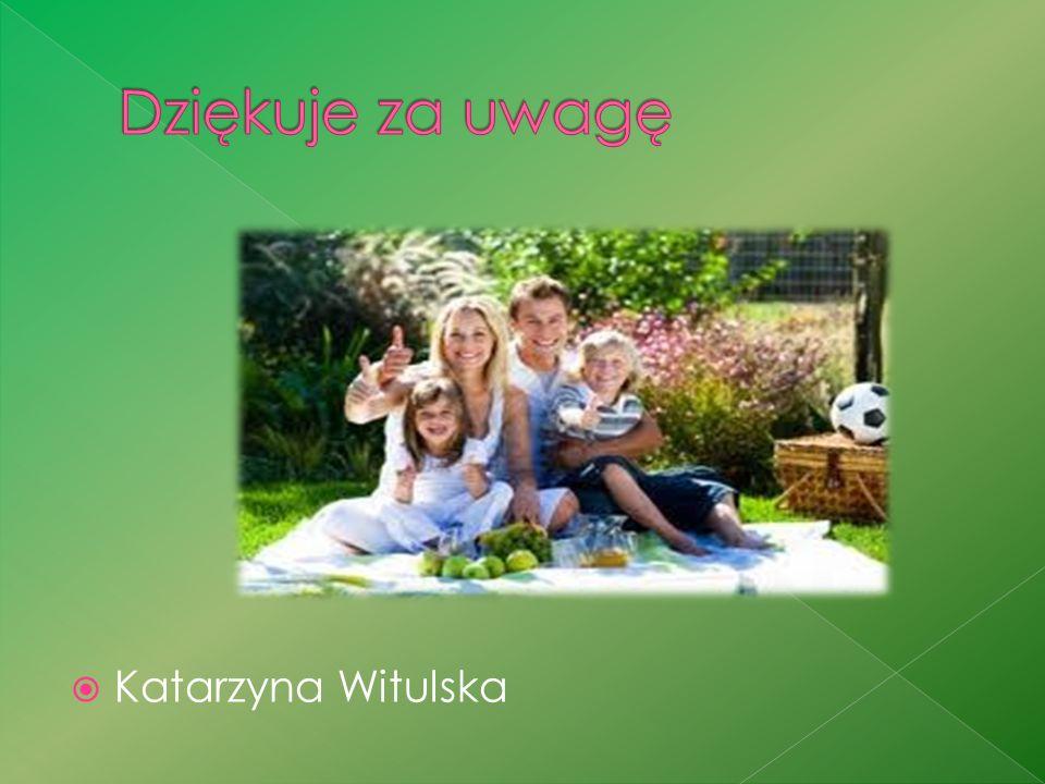Dziękuje za uwagę Katarzyna Witulska