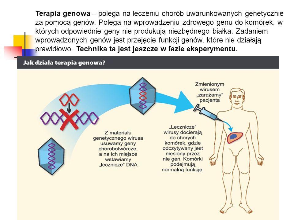 Terapia genowa – polega na leczeniu chorób uwarunkowanych genetycznie za pomocą genów.