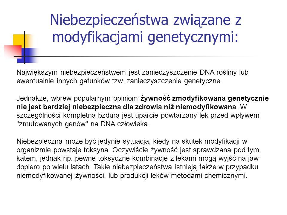 Niebezpieczeństwa związane z modyfikacjami genetycznymi: