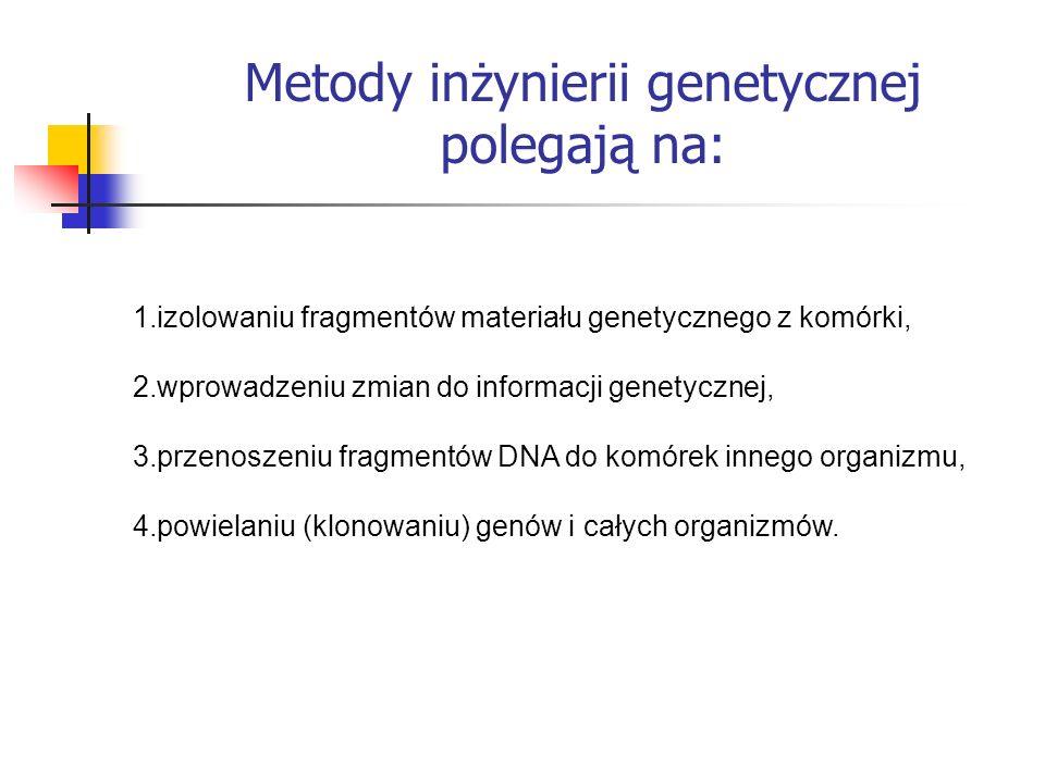 Metody inżynierii genetycznej