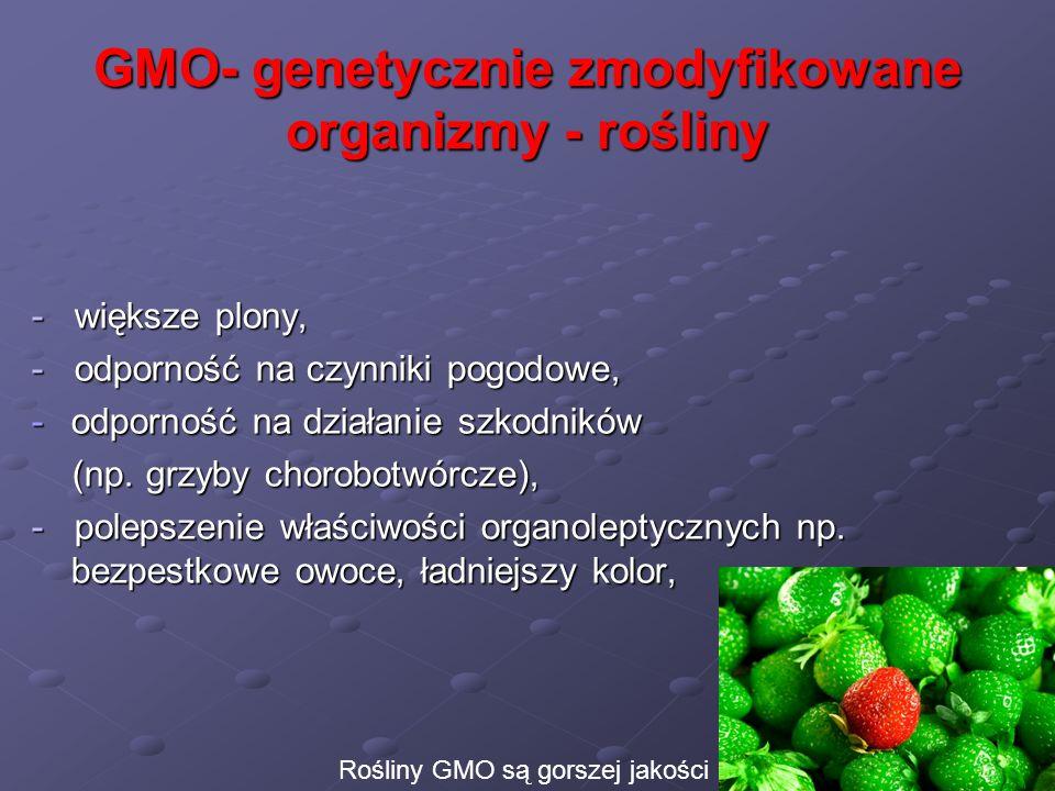 GMO- genetycznie zmodyfikowane organizmy - rośliny