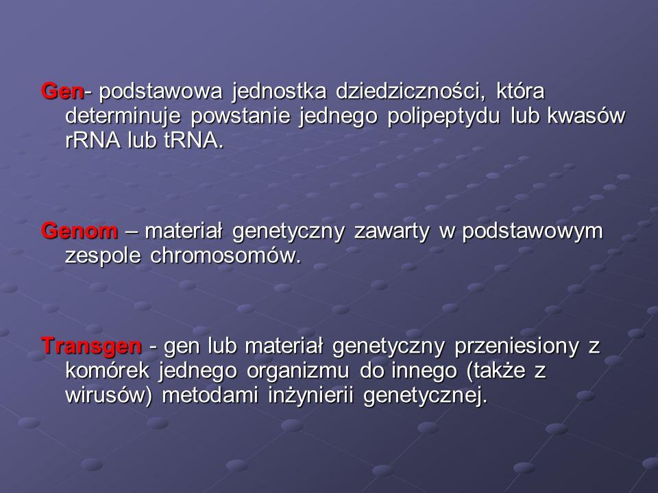 Gen- podstawowa jednostka dziedziczności, która determinuje powstanie jednego polipeptydu lub kwasów rRNA lub tRNA.