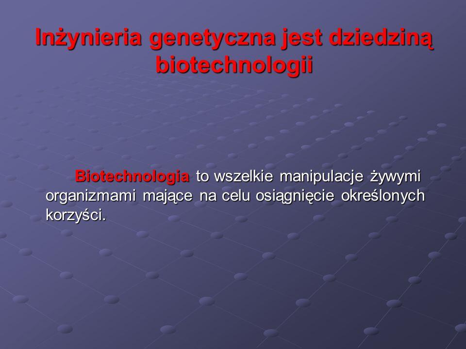 Inżynieria genetyczna jest dziedziną biotechnologii