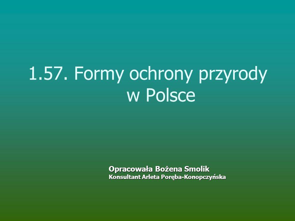 1.57. Formy ochrony przyrody w Polsce