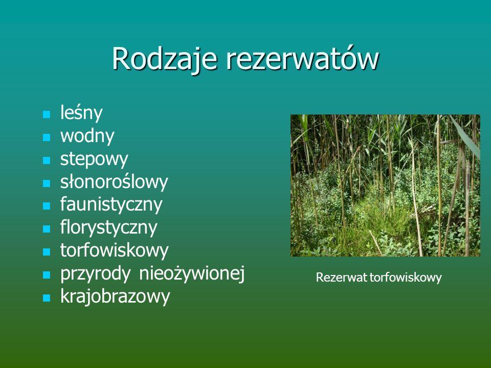 Rodzaje rezerwatów leśny wodny stepowy słonoroślowy faunistyczny