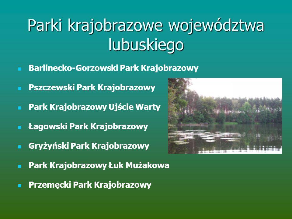 Parki krajobrazowe województwa lubuskiego