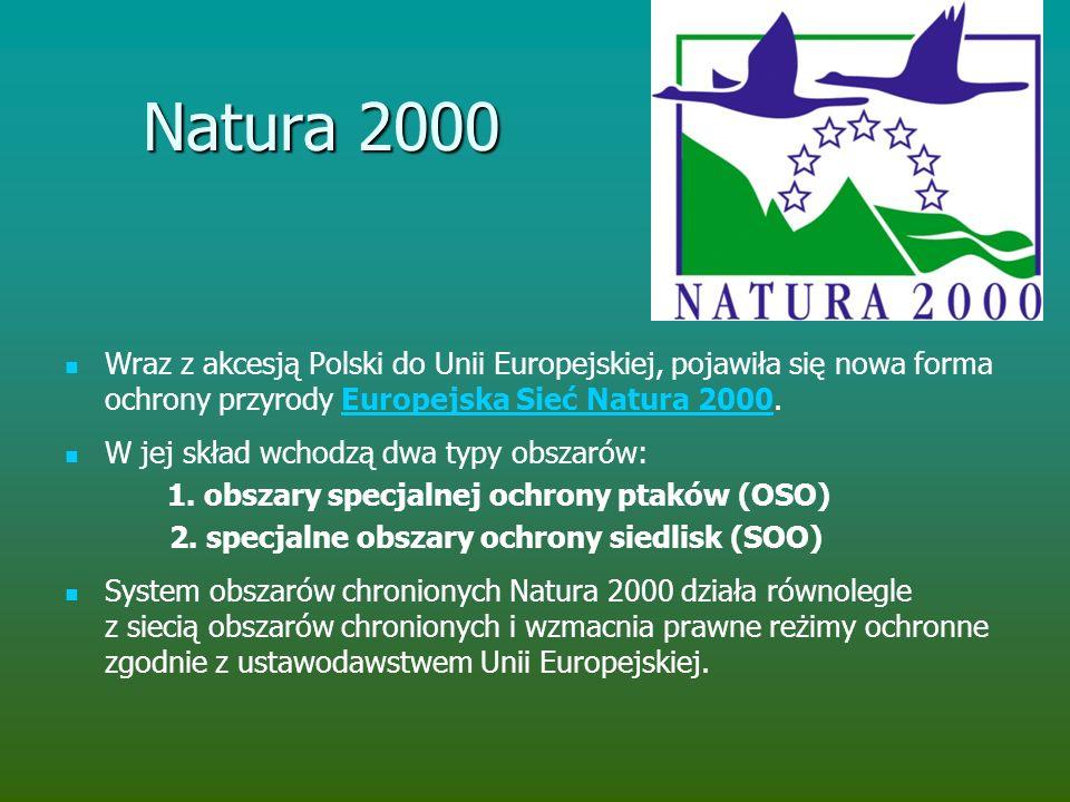 Natura 2000 Wraz z akcesją Polski do Unii Europejskiej, pojawiła się nowa forma ochrony przyrody Europejska Sieć Natura 2000.