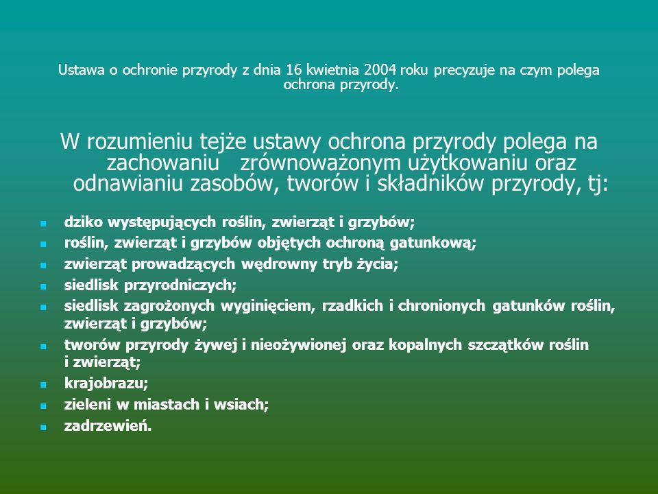 Ustawa o ochronie przyrody z dnia 16 kwietnia 2004 roku precyzuje na czym polega ochrona przyrody.