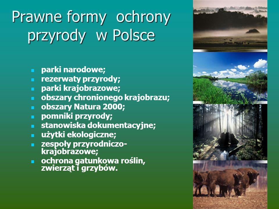 Prawne formy ochrony przyrody w Polsce