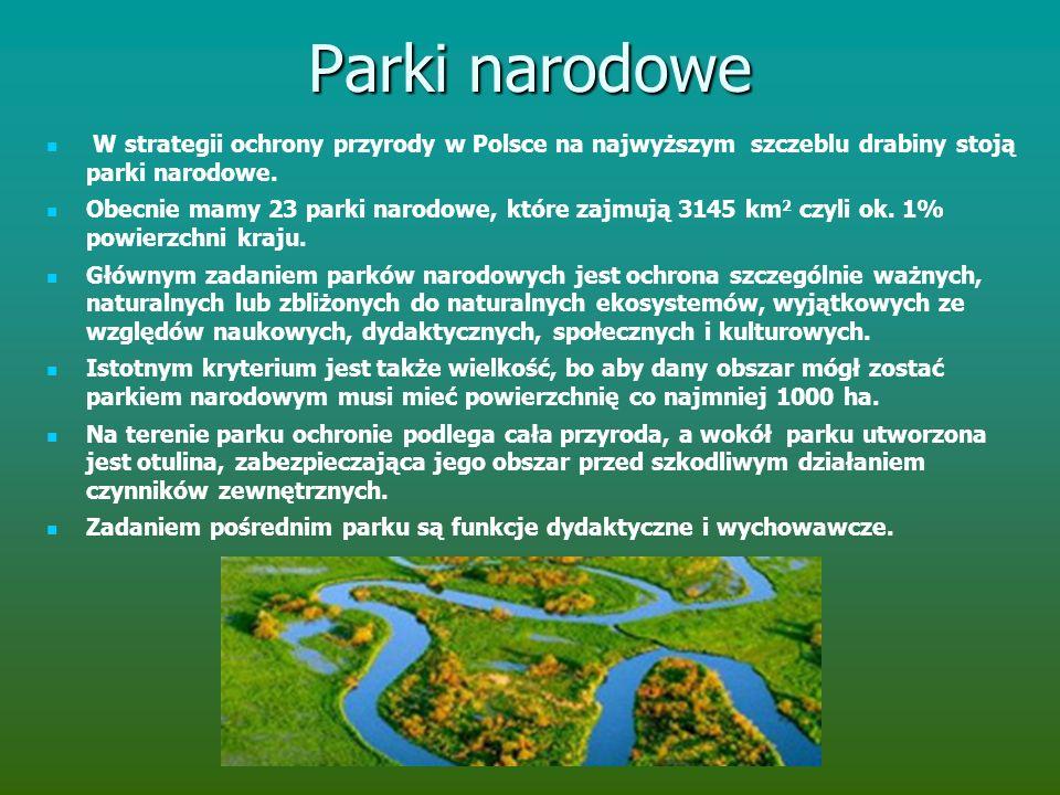 Parki narodowe W strategii ochrony przyrody w Polsce na najwyższym szczeblu drabiny stoją parki narodowe.