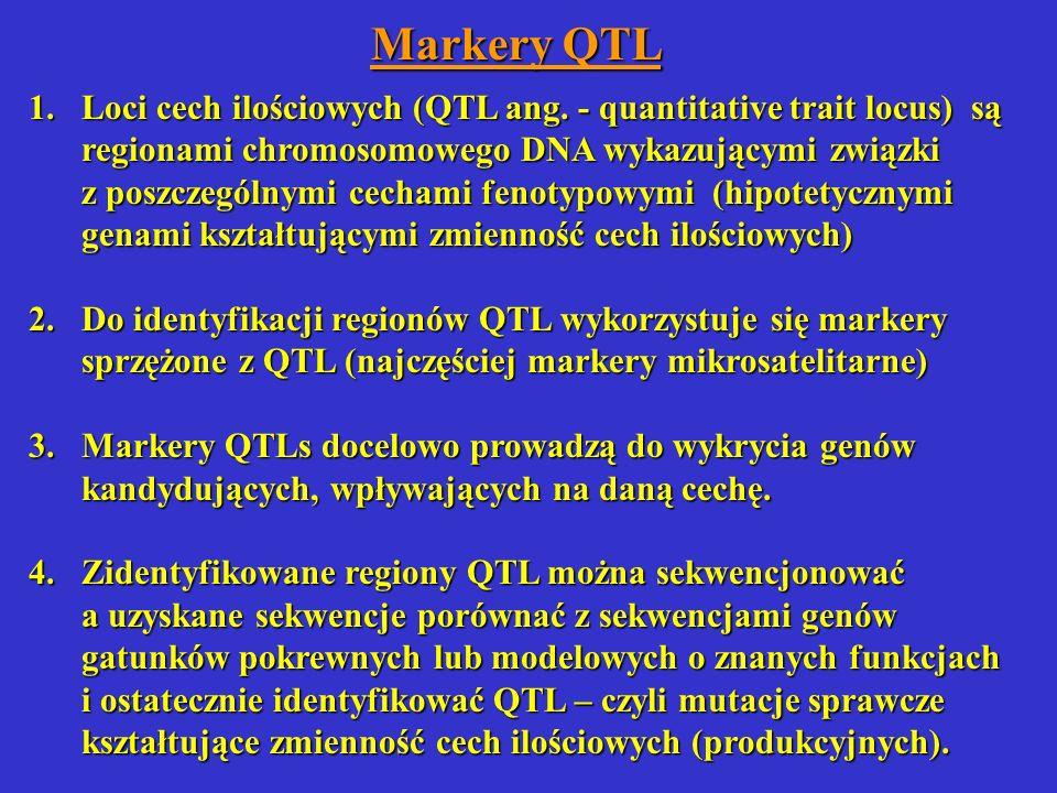 Markery QTL