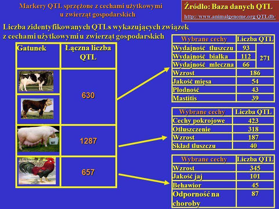 Markery QTL sprzężone z cechami użytkowymi u zwierząt gospodarskich